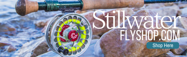 boca grande lodging - stillwater fly shop